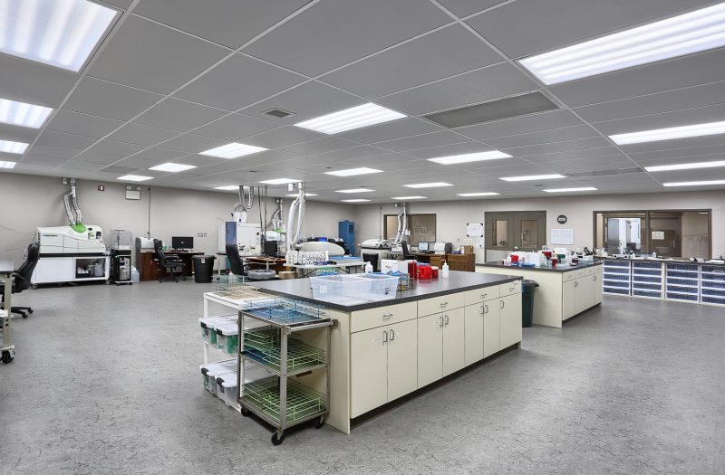 Chemical Solutions Lab 1